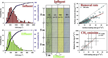 Evaluating organics removal performance from lagoon