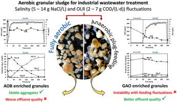 Does the feeding strategy enhance the aerobic granular
