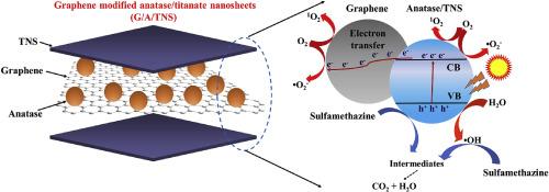 Graphene modified anatase/titanate nanosheets with enhanced