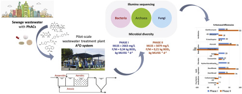Linking microbial diversity and population dynamics to the