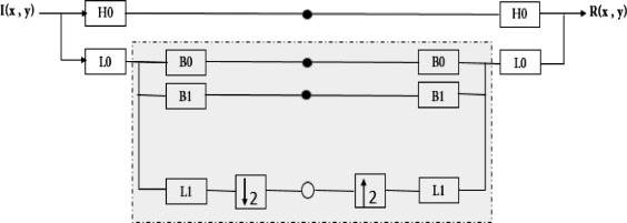 Steerable pyramid transform and local binary pattern based
