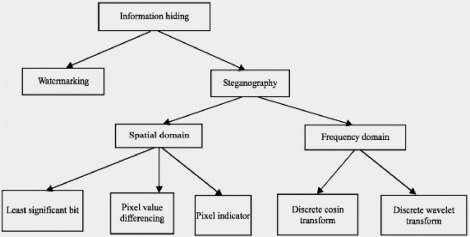 A comparative analysis of image steganography based on DCT