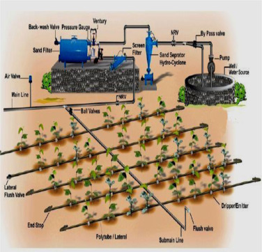 Smart sensor for automatic drip irrigation system for paddy