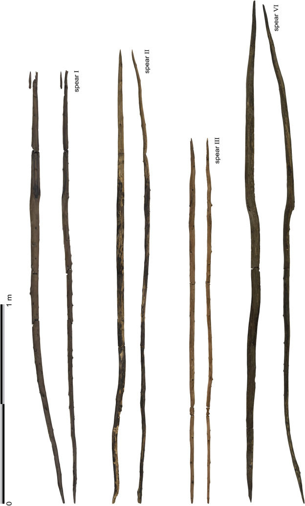 New insights on the wooden weapons from the Paleolithic site of Schöningen - ScienceDirect