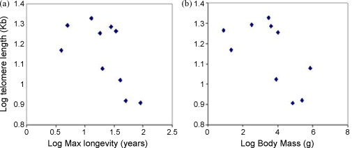 Significant correlation of species longevity with DNA double