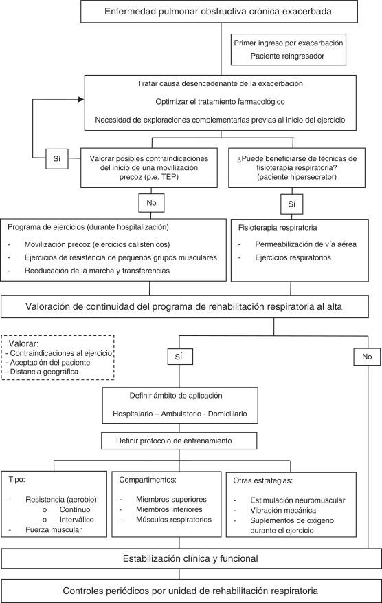 Recomendaciones sobre programas de rehabilitación pulmonar en ...