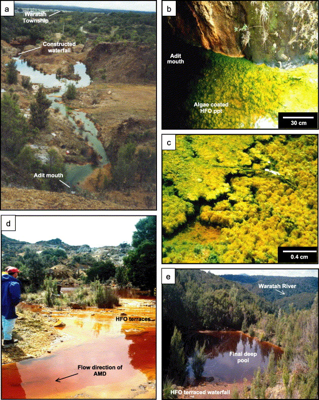 Mechanisms of arsenic attenuation in acid mine drainage from