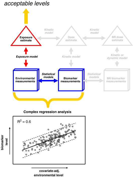 A biomonitoring framework to support exposure and risk