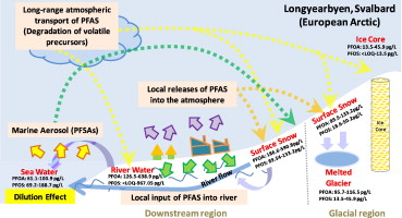 Transport of Perfluoroalkyl substances (PFAS) from an arctic
