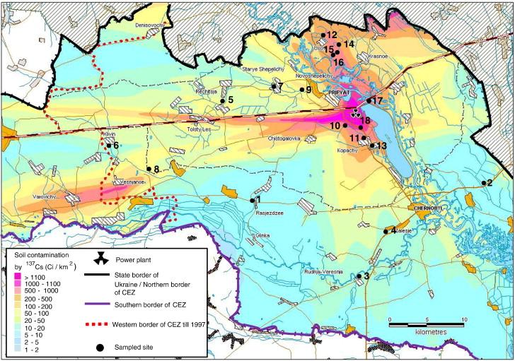 Soil nematode assemblages as bioindicators of radiation impact in ...