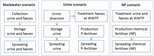 Environmental impact of recycling nutrients in human excreta