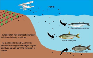 Persistent organic pollutants (POPs) in fish with different