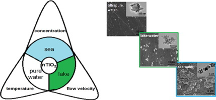 Roles of temperature and flow velocity on the mobility of