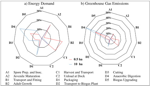 Energy performance and greenhouse gas emissions of kelp