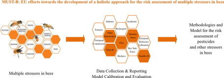 Risk assessment of pesticides and other stressors in bees