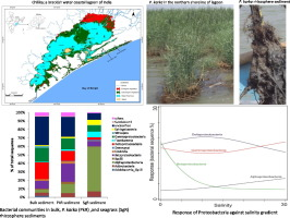 Salinity and macrophyte drive the biogeography of the sedimentary