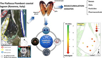 A Comprehensive Evaluation Of The Environmental Quality Of A Coastal