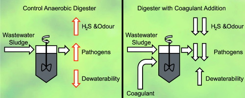 Assessing iron and aluminum-based coagulants for odour and