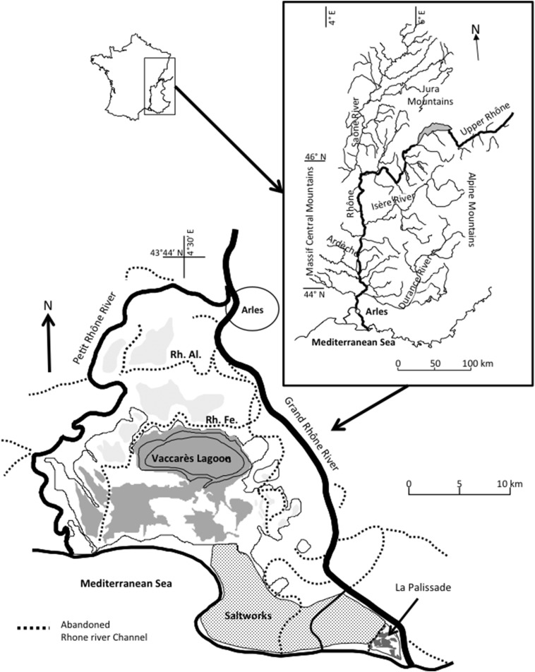 The Impact Of Two Large Floods 19931994 On Sediment Deposition In