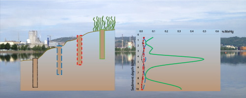 The influence of permanently submerged macrophytes on