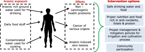 human health is unaffected by environmental limiting factors