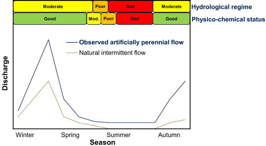 Biomonitoring of intermittent rivers and ephemeral streams