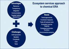 advantages and challenges associated with implementing an ecosystem Integrated Delivery Systems Benefits download full size image