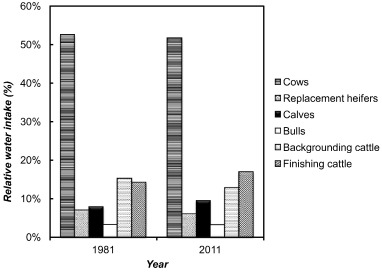 Water use intensity of Canadian beef production in 1981 as