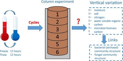Vertical variation of a black soil's properties in response