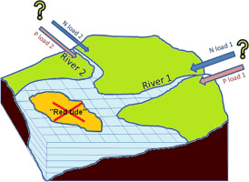 How to avoid eutrophication in coastal seas? A new approach to