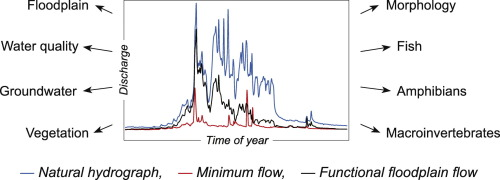 Advancing towards functional environmental flows for temperate