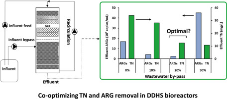 Co-optimization of sponge-core bioreactors for removing total