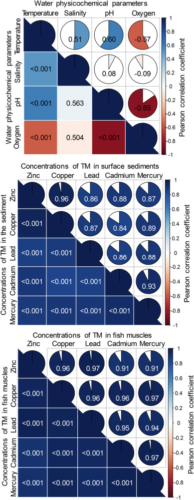 Modelling environment contamination with heavy metals in