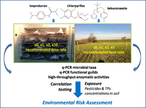 Interactions between pesticides and microorganisms