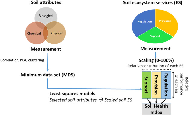 Soil health assessment: A critical review of current