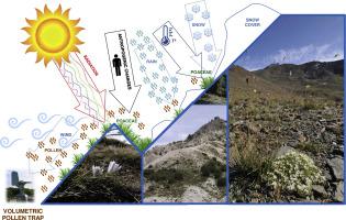 Tracking Montane Mediterranean grasslands: Analysis of the effects