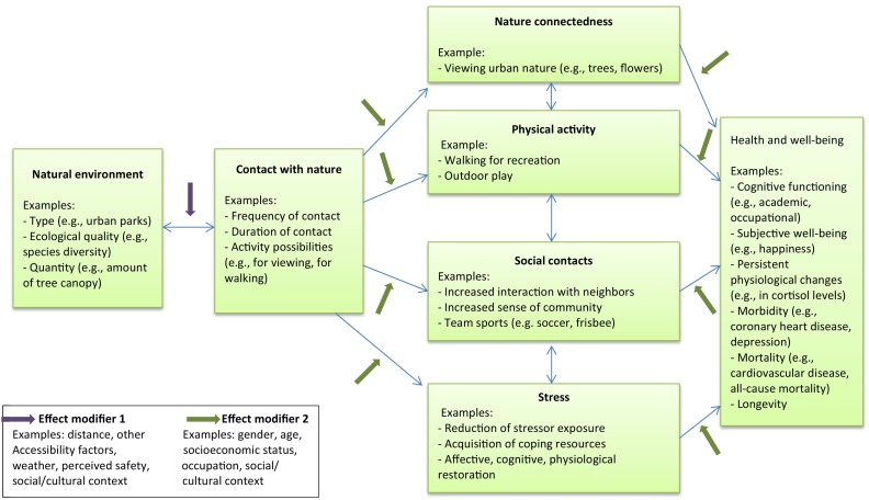 what are social and cultural factors