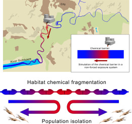 Disturbance of ecological habitat distribution driven by a