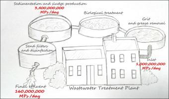 Wastewater Management Pdf