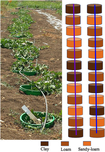 Importance of soil texture to the fate of pathogens introduced by