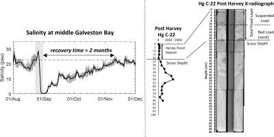 Dramatic hydrodynamic and sedimentary responses in Galveston