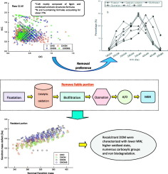 Transformation of dissolved organic matter during advanced coal