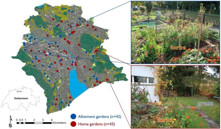 Litter Decomposition Driven By Soil Fauna Plant Diversity