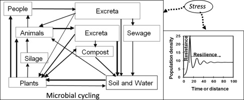One Health - Cycling of diverse microbial communities as a