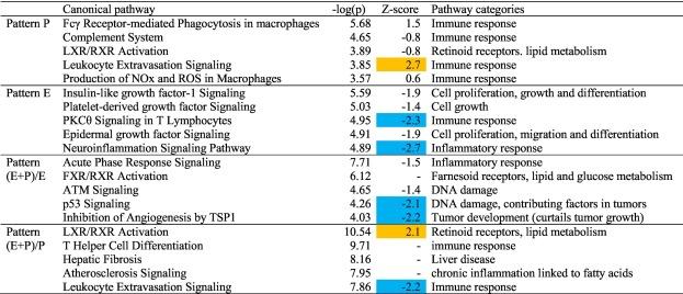 Cumulative effects of municipal effluent and parasite