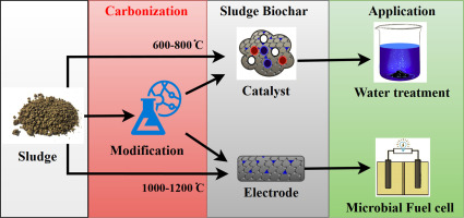 Conversion of sewage sludge into environmental catalyst and