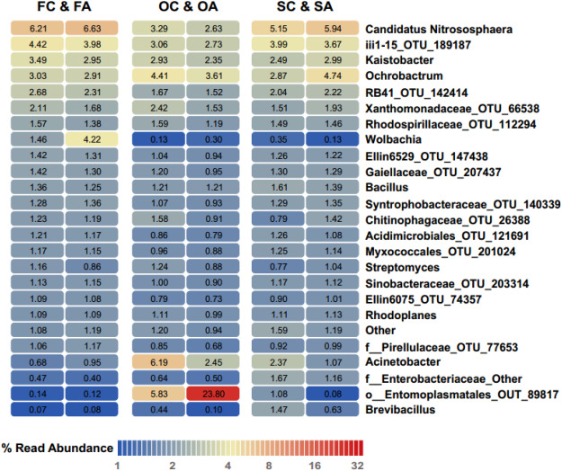 Species-specific response of the soil collembolan gut
