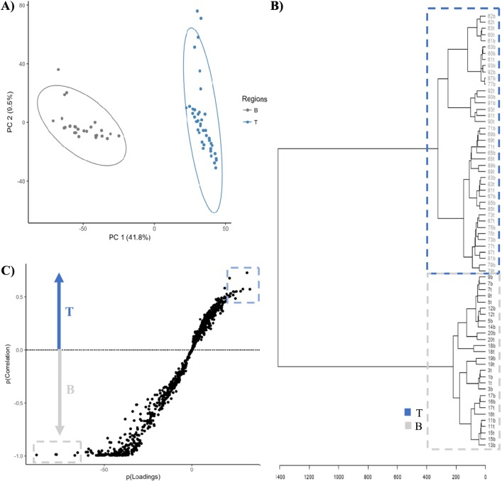 """Omics"""" workflow for paleolimnological and geological"""