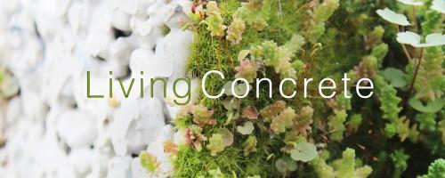 Living Concrete Democratizing Living Walls Sciencedirect