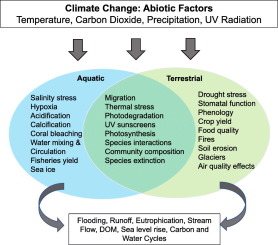 Comparing the impacts of climate change on the responses and